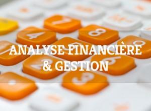 formation-analyse-financiere-gestion