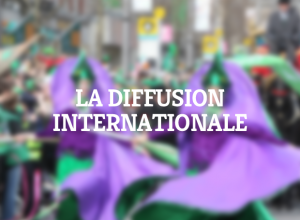 formation-diffusion-internationale-spectacle